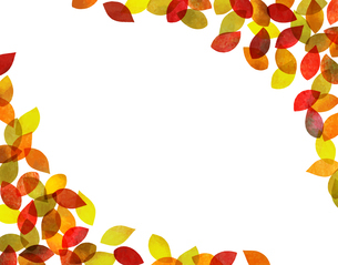 秋の紅葉背景素材(水彩色鉛筆)の写真素材 [FYI03153259]