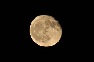 十六夜の月の写真素材 [FYI03153266]