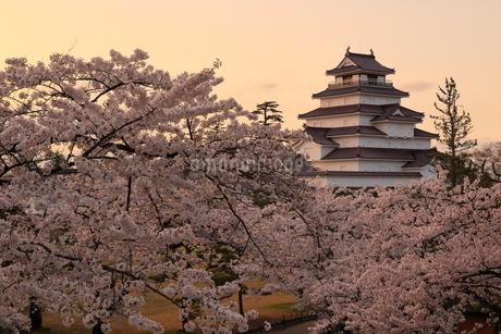 鶴ヶ城 (若松城) 日本 福島県 会津若松市の写真素材 [FYI03153377]