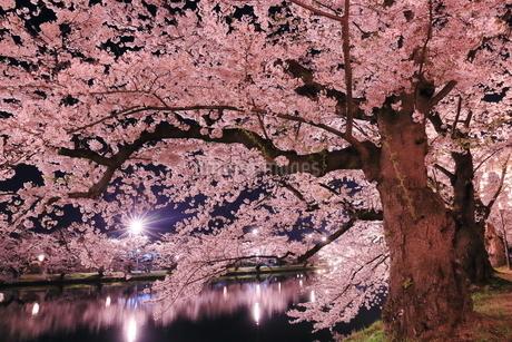 弘前公園 日本 青森県 弘前市の写真素材 [FYI03153378]