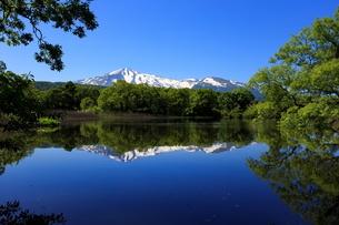 冬師湿原 日本 秋田県 にかほ市の写真素材 [FYI03153382]