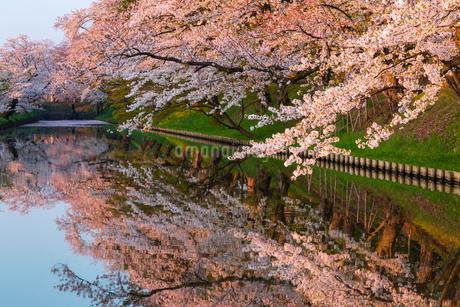 弘前公園 日本 青森県 弘前市の写真素材 [FYI03153389]