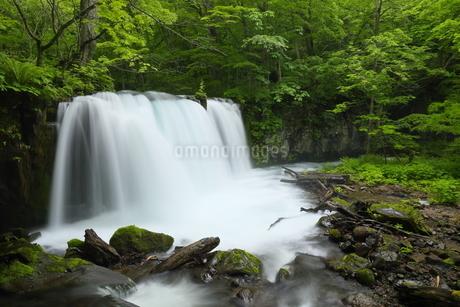 銚子大滝 日本 青森県 十和田市の写真素材 [FYI03153397]