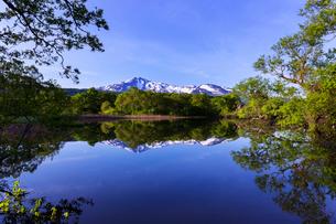 冬師湿原 日本 秋田県 にかほ市の写真素材 [FYI03153399]