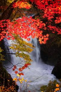 止滝(とまりだき) 日本 秋田県 鹿角市の写真素材 [FYI03153402]