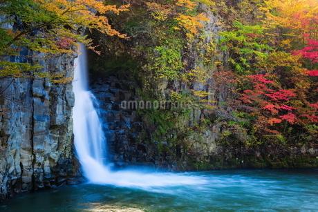 銚子の滝 日本 秋田県 鹿角市の写真素材 [FYI03153403]