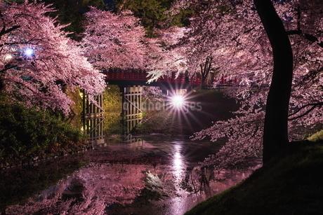 弘前公園 日本 青森県 弘前市の写真素材 [FYI03153424]