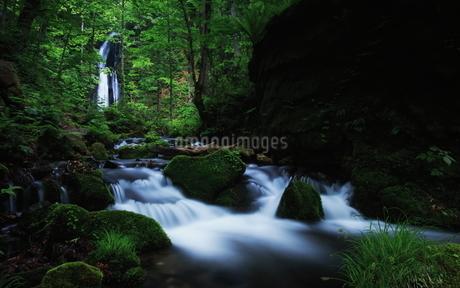 奥入瀬渓流(Oirase River) 日本 青森県 十和田市の写真素材 [FYI03153428]