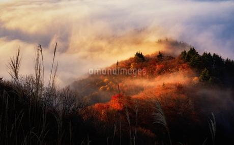 磐梯吾妻レークライン 日本 福島県 耶麻郡の写真素材 [FYI03153433]
