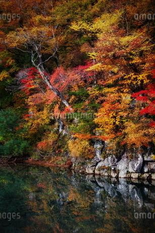 法体の滝 日本 秋田県 由利本荘市の写真素材 [FYI03153440]