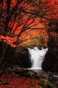 止滝(とまりだき) 日本 秋田県 鹿角市の写真素材 [FYI03153441]