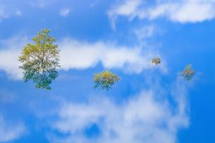 秋扇湖 日本 秋田県 仙北市の写真素材 [FYI03153442]