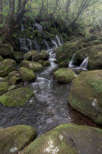 元滝伏流水 日本 秋田県 にかほ市の写真素材 [FYI03153461]