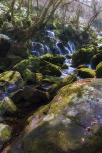 元滝伏流水 日本 秋田県 にかほ市の写真素材 [FYI03153466]