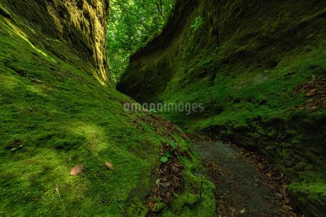 岩 風景の写真素材 [FYI03153751]