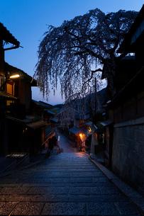 京都 桜 三年坂の写真素材 [FYI03153780]