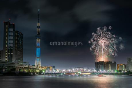 汐入公園 日本 東京都 荒川区の写真素材 [FYI03153839]