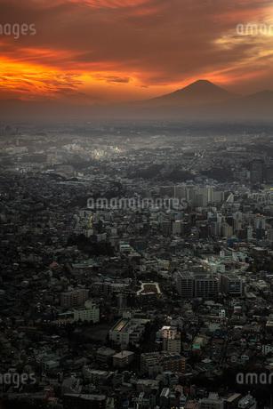 富士山 日本 神奈川県 横浜市の写真素材 [FYI03153848]