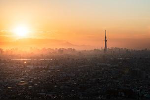 アイリンクタウン 日本 千葉県 市川市の写真素材 [FYI03153873]