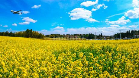 空の駅 風和里しばやま 日本 千葉県 芝山町の写真素材 [FYI03153927]