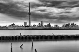 東京スカイツリー モノクロの写真素材 [FYI03153933]