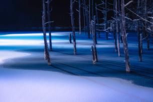 青い池 日本 北海道 美瑛町の写真素材 [FYI03153999]