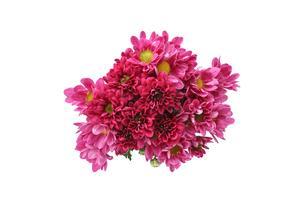 菊の花束の写真素材 [FYI03154196]