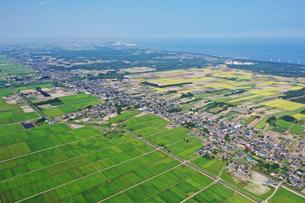 新潟県の田園風景の写真素材 [FYI03154319]