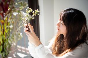 窓辺でスマホを見ている女性の写真素材 [FYI03154483]