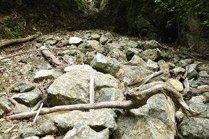 土砂崩れの写真素材 [FYI03154498]