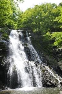 原小屋沢の雷滝の写真素材 [FYI03154730]