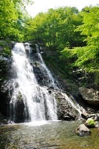 原小屋沢の雷滝の写真素材 [FYI03154731]