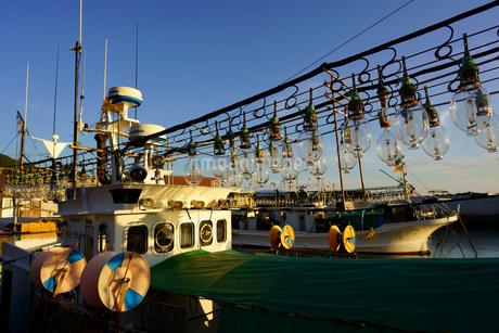 イカ釣り漁船の写真素材 [FYI03154746]