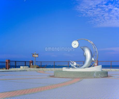 北海道 自然 風景 野寒布岬 (ノシャップ岬)の写真素材 [FYI03154827]