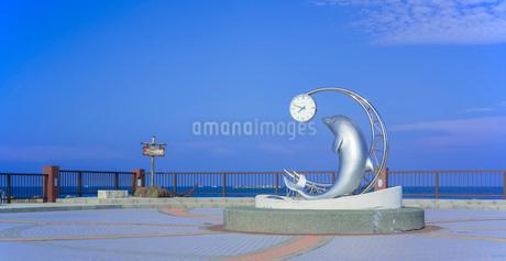 北海道 自然 風景 パノラマ 野寒布岬 (ノシャップ岬)の写真素材 [FYI03154829]