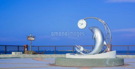 北海道 自然 風景 パノラマ 野寒布岬 (ノシャップ岬)の写真素材 [FYI03154830]