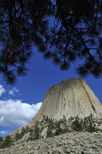 米ワイオミング州デヴィルズタワー国定公園でのデヴィルズタワーの風景の写真素材 [FYI03155249]