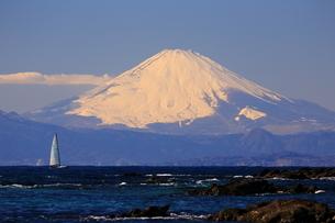 富士山とヨットの写真素材 [FYI03155319]