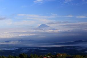天城山からの富士山の写真素材 [FYI03155324]