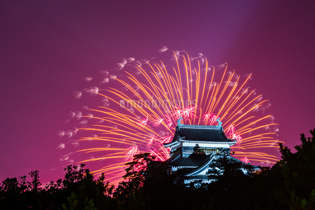 花火 日本 島根県 松江市の写真素材 [FYI03155419]