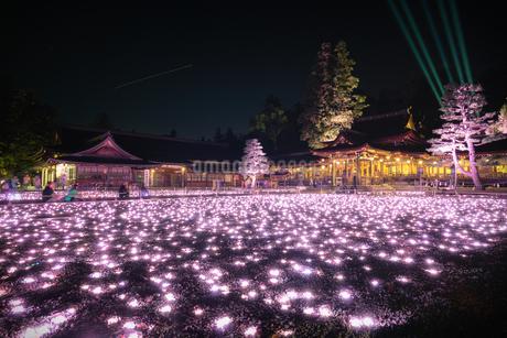 多賀大社 滋賀県 多賀町の写真素材 [FYI03155439]