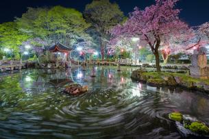 日中友好公園 岐阜県 岐阜市の写真素材 [FYI03155457]