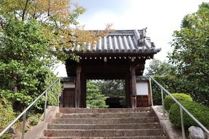 お寺の山門の写真素材 [FYI03155473]