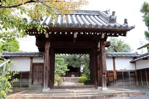 秋のお寺の写真素材 [FYI03155474]