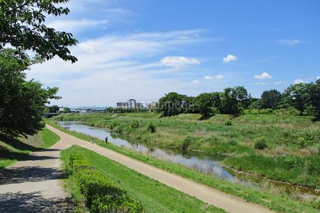 緑の河川敷と青い空の写真素材 [FYI03155486]