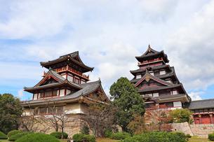 京都・伏見桃山城の写真素材 [FYI03155499]