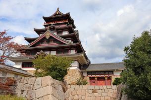 伏見桃山城・大天守と城門の写真素材 [FYI03155501]