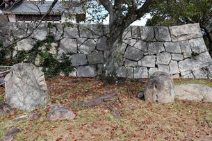 京都・伏見城の残石の写真素材 [FYI03155502]