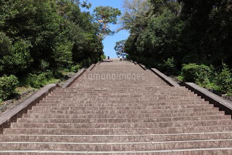 参道の長い石段の写真素材 [FYI03155505]
