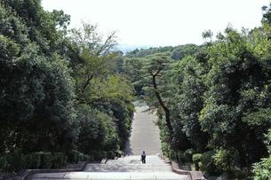 京都・伏見桃山陵の長い参道の写真素材 [FYI03155506]